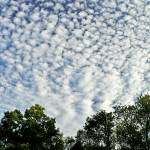 """Altocumulus Cloud Mackeral Sky"" by PhotographsByCarolFAustin"