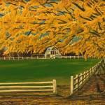 """Autumn Scene With Fence"" by stephenthedigitalartist"