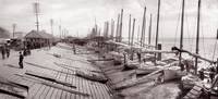 """""""Luggers Landing"""" New Orleans 1906 by WorldWide Archive"""