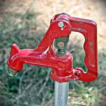 """Garden Faucet"" by lifeoverhere"