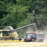 """Unloading the Grain"" by NatureandWildlife"
