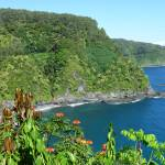 """Road to Hana View"" by tagshots"