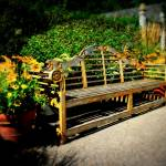 """""""Park Bench"""" by PerryWebster"""