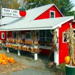 """""""cider mill3"""" by vickicook"""