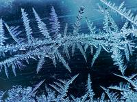 Ice crystals..