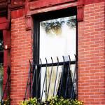 """Back Bay Window Box"" by cferrin"