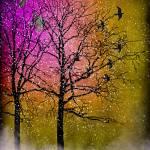 """Spring Thaw"" by KerriPestana"