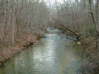 Alabama Stream