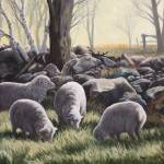 """Country Morning Sheep"" by Dullinger"