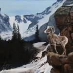 """Colorado Rocky Mountain Sheep"" by Dullinger"