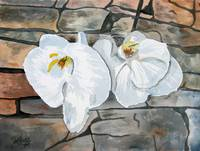 orchids flower painting art print