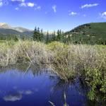 """Beaver Pond"" by LFK797"