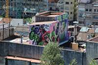 Grafitti on the Rooftops, Barcelona