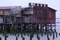 Astoria Cannery Ruins