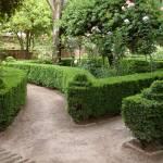 """""""Jardins dans l"""