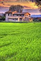 Countryhouse near Spello