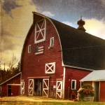 """Big Dog Stables barn"" by lmhersonjones"