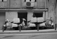 Moped Delivery BW