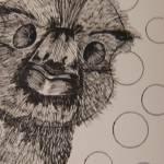 """Emu"" by CherylNicole"