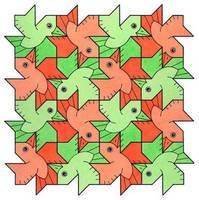 tessellation of Polya Bird, two colours