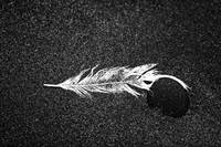 White Feather and Black Stone