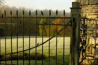 Wrought-iron Gate on Frosty, Foggy Morning