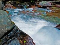 Avalanche Creek 5