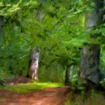 """""""A Day in the Forest"""" by LutzBaar"""