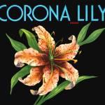 """Corona Lily"" by dalidayna"