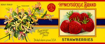 Honeysuckle Strawberries