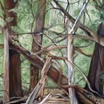 """Forest Floor"" by heartart"