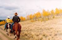 Horseback in Colorado's Autumn