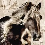 """The Horse aka El Caballo"" by Dancin"