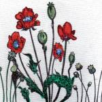"""poppy4x4garden"" by reneefauvestudio"