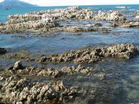 Kaikoura Beach Front New Zealand