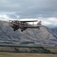 Dragonfly DH90 Warbirds Over Wanaka 2010 NZ Art Prints & Posters by Mark Ireland