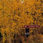 """Fall Around the Colorado Trail"" by CocktailHour"