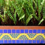 """""""Tiles and plant"""" by fecheagaray"""