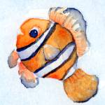 """Clownfish"" by theparables"