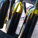"""wine bottles"" by sandradee8"