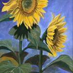 """Country Sunflowers"" by Dullinger"