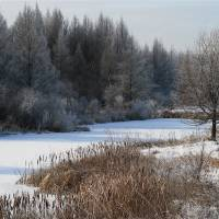 Winter Pond by Roger Dullinger