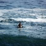 """Lone Surfer"" by LuciaMaldonado"