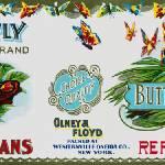 """Butterfly Brand"" by dalidayna"