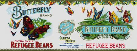 Butterfly Brand