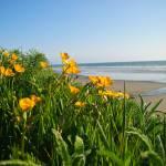 """""""Beach #4"""" by jun"""
