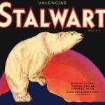 """Stalwart"" by dalidayna"