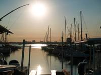Charleston Marina Late Afternoon