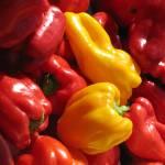 """Peppers"" by karanichole"