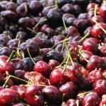 """Cherries"" by karanichole"